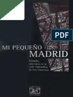 Tomás González González - Mi Pequeño Madrid