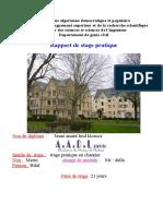 Rapport de stage .doc