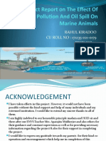 Project Report on The Effect Of Thermal Pollution And Oil Spill On Marine Animals.pptx