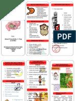 leaflet gasteritis