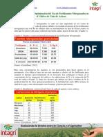 02. Estrategias para la optimizacion del uso de fertilizantes nitrogenados en el cultivo de cana de azucar