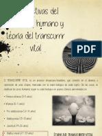 adultezvejezymuerte.pdf