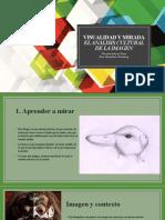 Javier_Castillo_Visualidad y mirada_El análisis cultural de la imagen
