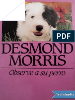 observe a su perro Morris.pdf