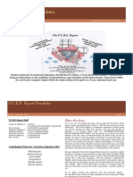 1st Issue Pure Report Newsletter