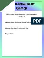 En qué consiste el trabajo en proyectos.pdf
