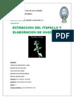 final proyecto.docx