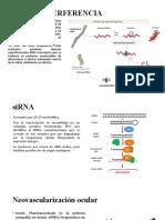 ARN DE INTERFERENCIA.pptx