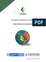 CATALOGO DE CTAS EMPRESA EN LIQUIDACION - SECTOR PUBLICO.pdf