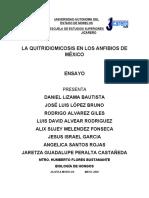 LA QUITRIDIOMICOSIS EN MEXICO