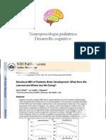 Neuropsicología pediátrica.pptx