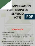 CTS-1