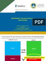Vite Alberto-Vercesi-Focus-Biostimolanti-2020