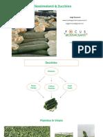 Zucchino Luigi-Pennuzzi-Focus-Biostimolanti 2020