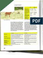 Natura S. 380-381, AB Fortpflanzungsstrategien (2)