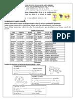 EL VERBO-TERMINACIÓNES AR, ER, IR 5° GRADO.pdf