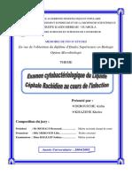 DEROUICHE-Aicha-KHAZENE-Kheira.pdf