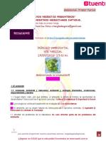 29-05-2020 Ambiental Primer Parcial Rezagados.pdf