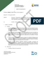 Directiva Estructural DCAME 14 DE AGOSTO