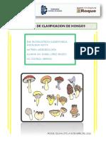 clasificacion hongos (isa)