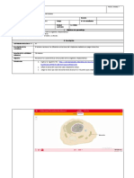 Laboratorio 07_Citoplasma