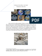 A_Mentira_da_Terra-Globo_-_Eric_Dubay_Tr.pdf