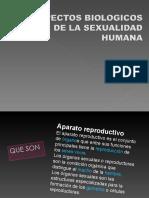 aspectosbiologicosdelasexualidad-090517181601-phpapp01.pdf