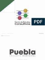 Encuesta Municipal Puebla Marzo 2020 Elecciones