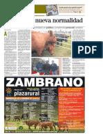El País Domingo