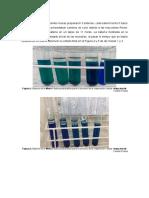 bioqu informe 4.docx