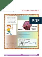 CA_P_1° GRADO_S3_EL SISTEMA NERVIOSO