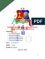 informe de el acento-1.docx
