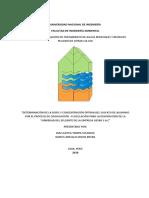Proyecto Dual - Coagulación - Floculación - Gexim Rev 3