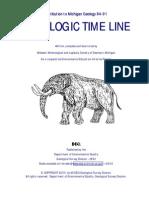 Michilogic time line