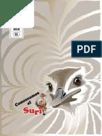 suri_carta.pdf