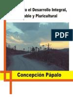 02_concepcion_papalo_2