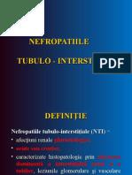 nefritele tubulo interstitiale (1).ppt