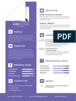 Professional Developer Resume Template.docx