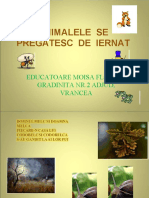 ANIMALE LA IERNAT.ppt