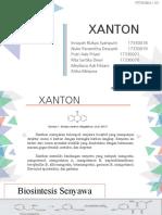 PPT_XANTON_Kelompok 6.pptx