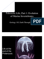 Paleozoic life, evolution of marine invertebrates