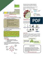 CIENCIA Y TECNOLOGÍA 3,4 y 5 sesión 1 del 23 de abril 2020.pdf