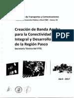 PIP_Pasco