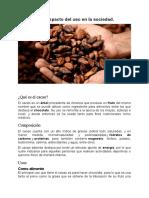 El cacao y el impacto del uso en la sociedad