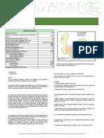 Alejandría.pdf