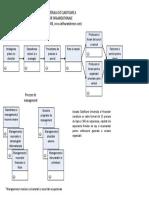 Procese-Andersen.pdf