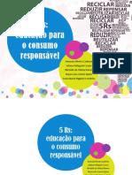 5rs_educacao_consumo_sustentavel_2017.pdf