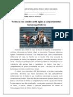 atividade 6 - Ieda - VIOLENCIA NOS ESTADIOS