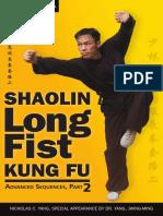 Fist. shaolin. kung fu. Advanced Sequences
