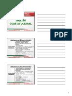 Generico Direito Constitucional Julio Hidalgo (13)
